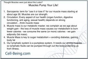 Healthy Lifestyle making Muscle Mass an important part of our health processes